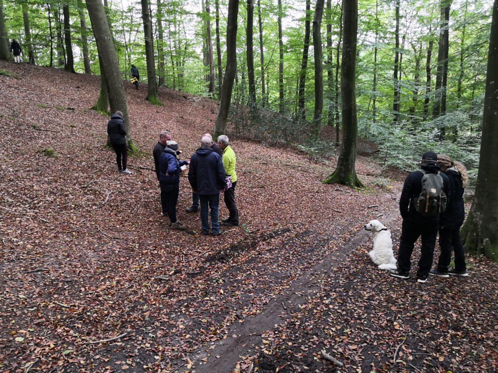 Stemningsbilleder fra en dejlig svampetur i Gårslevskoven med naturvejleder Finn Lillethorup.